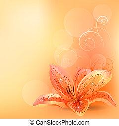 lekki, pastelowe tło, z, pomarańczowa lilia