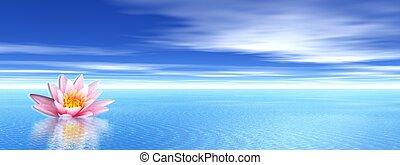 lelie, bloem, in, blauwe oceaan