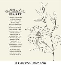 lelie, bloem, vrijstaand, op, white.