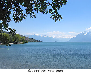 Leman Lake from the coast under a tree, Switzerland