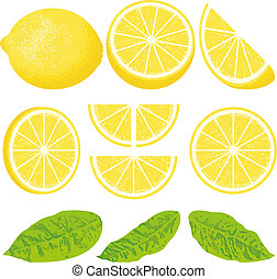 Lemon - A whole lemon and slices at different angles, also...