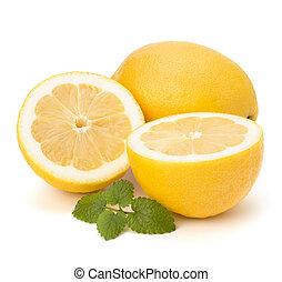 Lemon and citron mint leaf isolated on white background