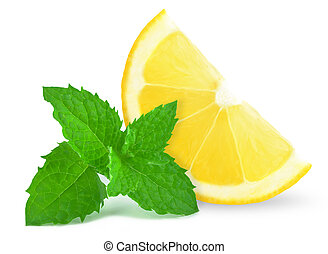 lemon and mint - lemon slice and mint on a white background