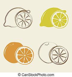 lemon and orange icons - vector illustration