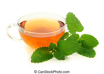 Lemon balm tea isolated on white background