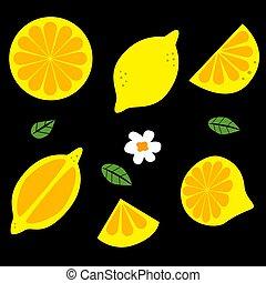 Lemon, citrus, fruit, juicy vector icons.