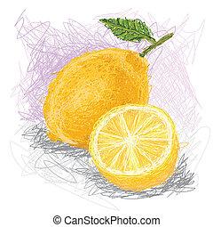 lemon - closeup illustration of a fresh lemon fruit.