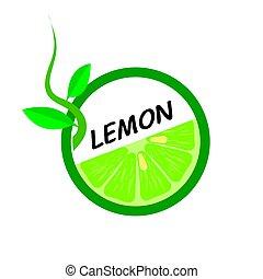 Lemon Fruit icons flat style, Vector Illustration.