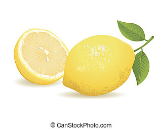 Realistic vector illustration of a lemon and a sliced lemon.