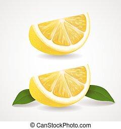 Lemon fruit slices isolated Realistic vector illustration.