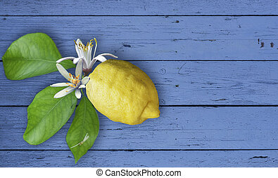 Lemon fruit with flowers and leaves