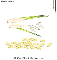 Lemon Grass with Vitamin B9 and Minerals