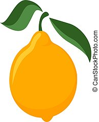 Lemon, illustration, vector on white background.