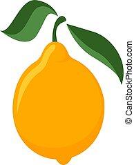 Lemon, illustration, vector on white background.
