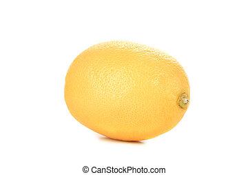 Lemon isolated on a white background.