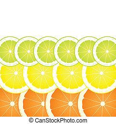 Lemon, lime and orange slices vector background