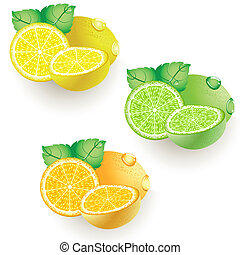 lemon lime orange - Ripe citrus - lemon, lime and orange. ...