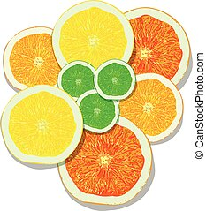 lemon, orange, lime, grapefruit slices on white background