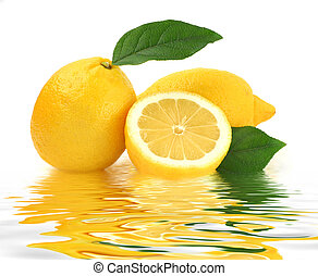 Lemon Reflection - Lemon studio isolated on white background