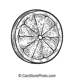Lemon slice sketch engraving vector illustration. T-shirt apparel print design. Scratch board imitation. Black and white hand drawn image.