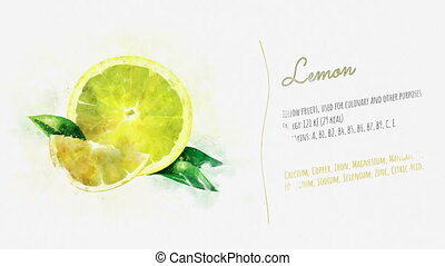 The slides contain a watercolor image of a lemon on the texture of the paper and the accompanying text with a list of useful substances contained in the fruit.