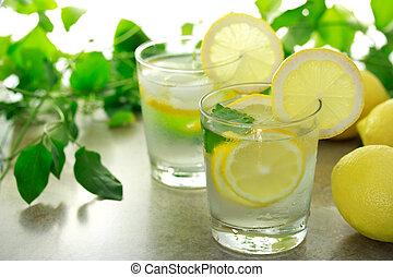 Lemon water with fresh lemons and green plants
