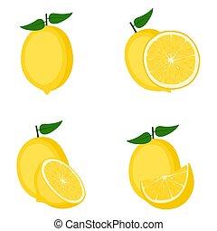 Lemon, whole fruit, half, slice, vector illustration