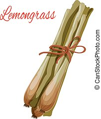 Lemongrass herb spice flavoring vector icon