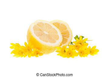 lemons isolated on the white background