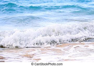 lenget, törő, képben látható, tropikus, tengerpart