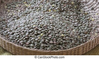 Lens culinaris is scientific name of Lentil legume. Wicker...
