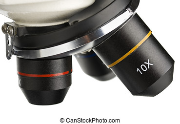 lens of the microscope