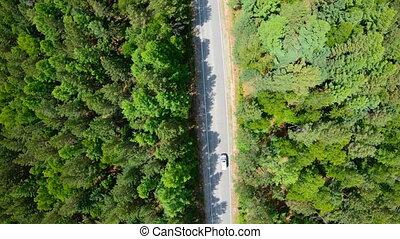 lent, aérien, conduite, voiture, forest., blanc, route, vue