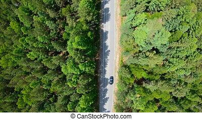lent, aérien, conduite, voiture, forest., noir, route, vue