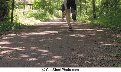 lent, course, gens, bicycles., cavalcade, sports, mouvement, park., ils, aller