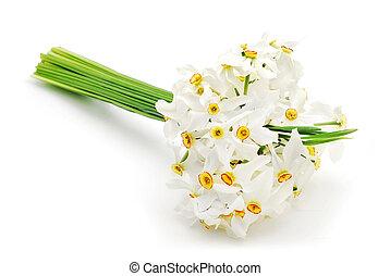 lent lily bouquet studio shot