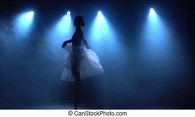 lent, motion., ballet., élégant, classique, tutu, blanc, ballerine, danse