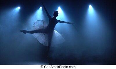 lent, motion., ballet., classique, tutu, blanc, ballerine, danse