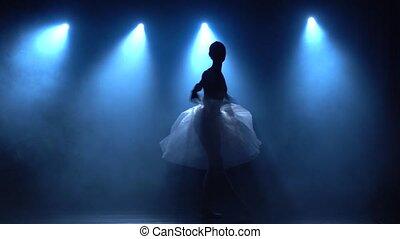 lent, motion., ballet., classique, tutu, gracieux, blanc, ballerine, danse