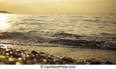 lent, soleil, mouvement, monture, plage caillou
