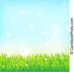 lente, achtergrond, met, gras, en, licht, effecte