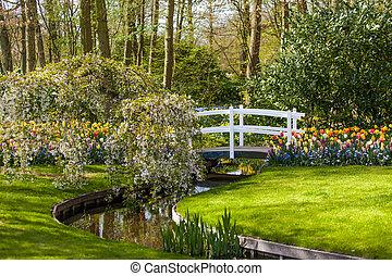 lente, achtergrond., tuin, landscaped