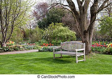 lente, bankje, park, tijd