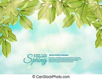 lente, bladeren, stralen, groene, zon