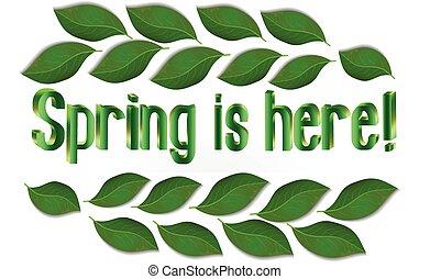 lente, bladeren, tekst