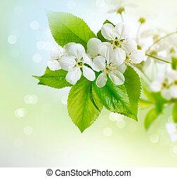 lente, de bloesem van de kers, op, benevelde achtergrond