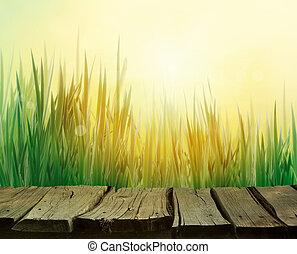 lente, gras, achtergrond