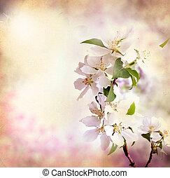 lente, grens, achtergrond, met, roze, blossom