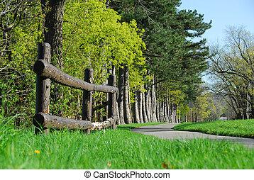 lente, in, een, park
