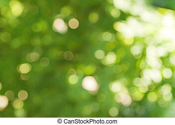 lente, kleuren, groene achtergrond